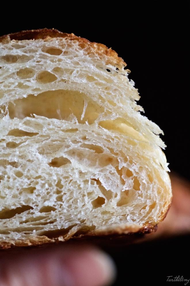 Croissant4 64